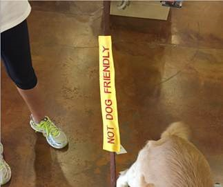 Adopt Me Dog Leash Sleeve