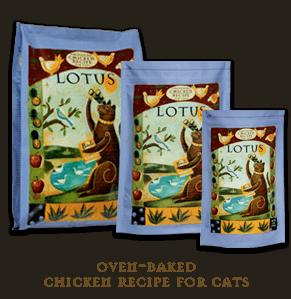chickenrecipecats[1]