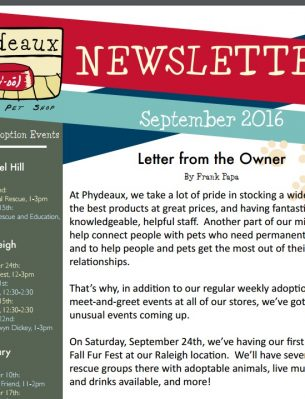 newsletter-september-2016